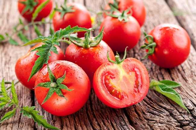 sayuran tomat