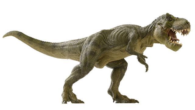 Fakta Unik Tentang Dinosaurus